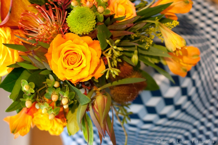 todas as fotos estão em www.sandralolis.wordpress.com